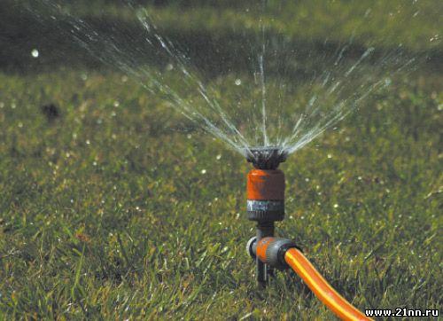 Оставить растения без полива
